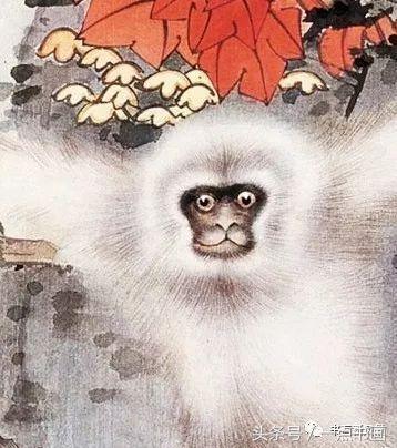 田世光工笔牡丹