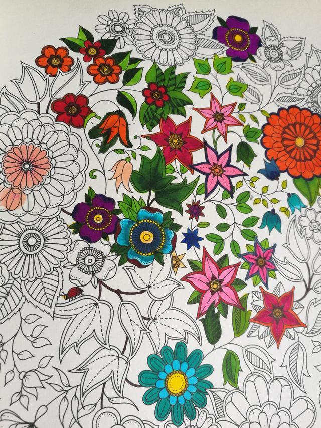 秘密花园涂色模版