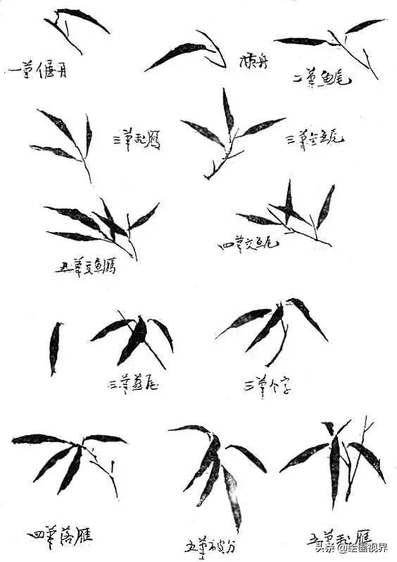 国画技法丨水墨竹子画法