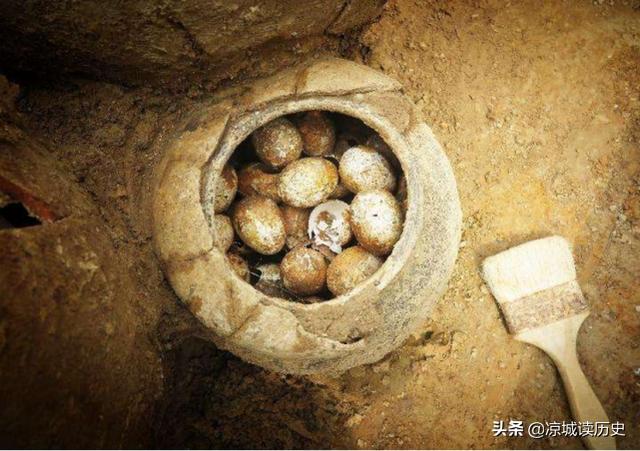 春秋时期墓陵挖出2500年前的鸡蛋,任何物品都能成为化石吗?