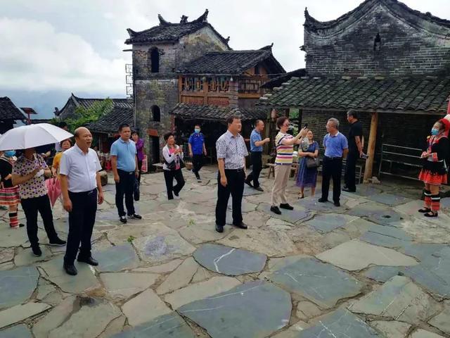 热烈欢迎广东省政协调研组领导莅临千年瑶寨调研