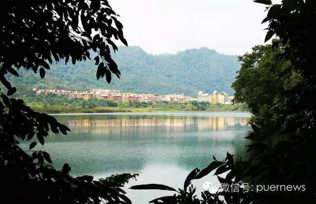 西盟佤族自治县有兰花