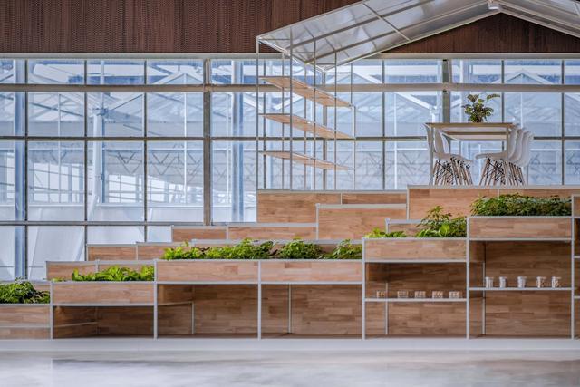 一种适合北方农业发展的钢结构阳光板温室大棚的制作方法_X技术