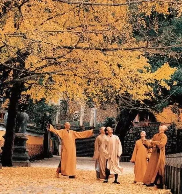 唯一获金奖的佛教摄影,太珍贵了!
