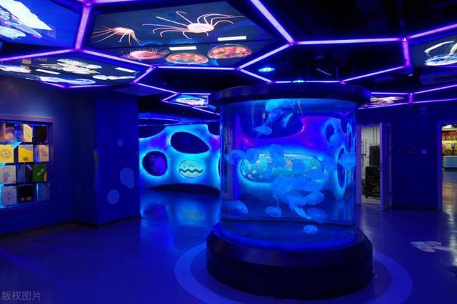 郑州海洋馆图片
