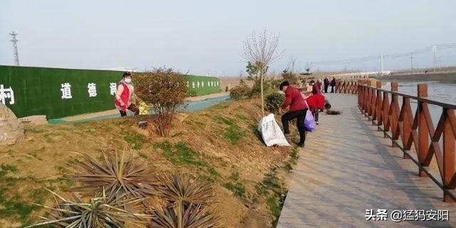 植树造林:安阳县白璧镇