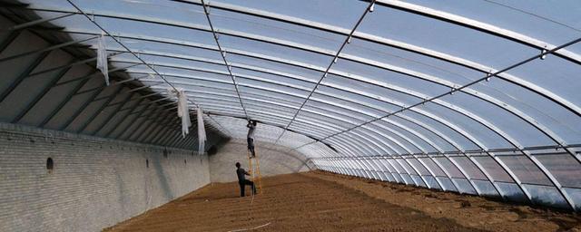 普通温室大棚一亩地造价只需4~5万,就可实现现代化农业生产