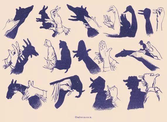 手影,趣味手影   看看你能做出幾樣?