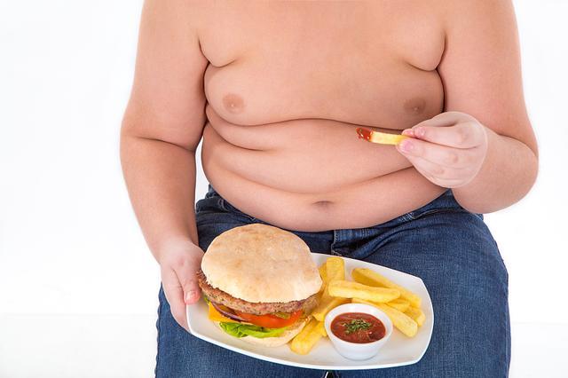 十斤肉和十斤脂肪照片