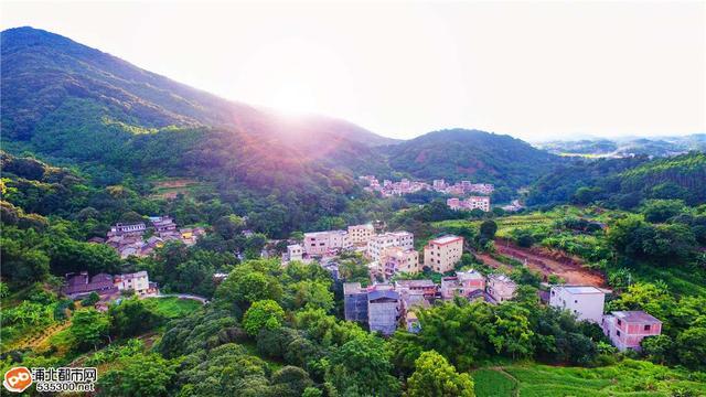 """浦北这条村变身网红打卡地,美如""""小桃源""""你去过吗?"""
