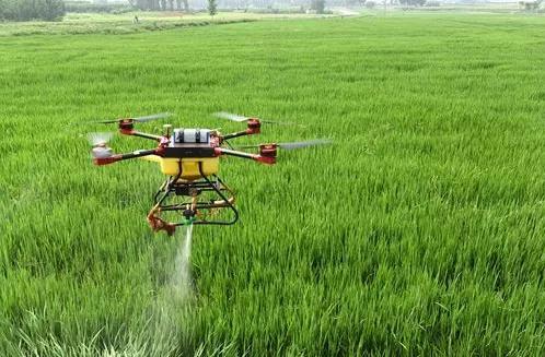 农业专家讲如何平衡施肥
