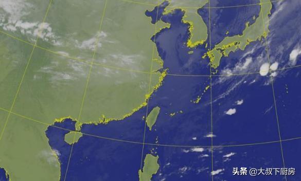 台风胚胎生成线路图