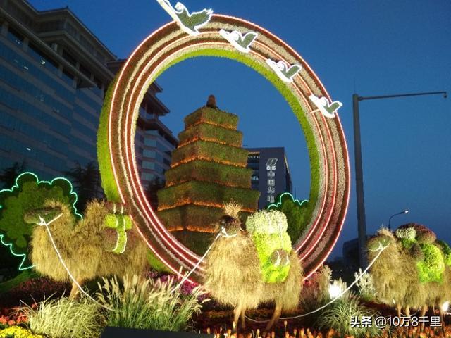 我爱你,北京的夜晚,立体花坛百般娇艳