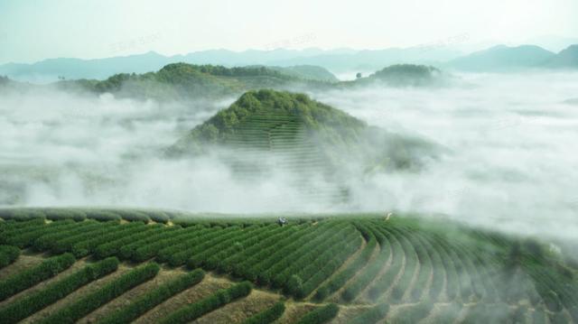 你与新鲜农产品之间,只差一个抖音的距离