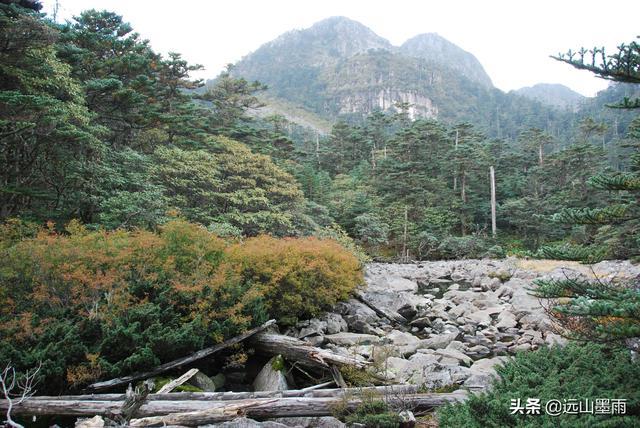 游记|大假游螺髻山,有些辛苦,却是我们西昌旅行中最美好的记忆
