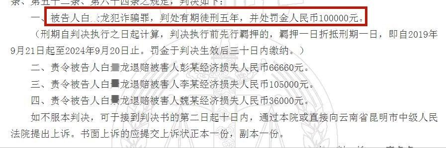 """""""中国红梅集团""""白某龙犯诈骗罪获刑5年,罚金10万!退诈骗款"""