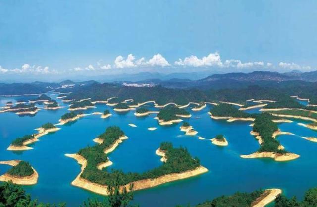 千岛湖鱼种类图片大全