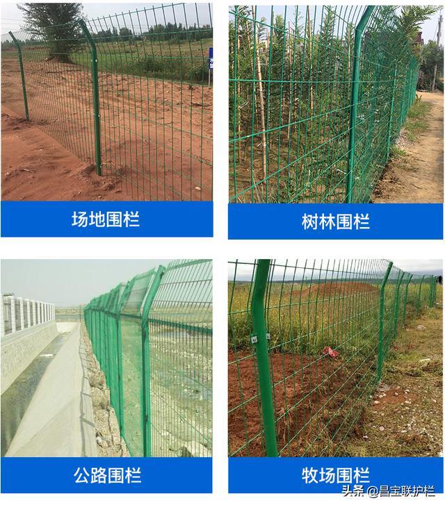 安平护栏网 安平护栏网厂家 公路护栏网 双边丝护栏网 小区护栏网