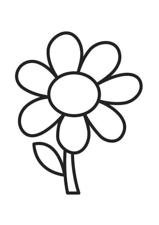 好看的花卉简笔画 - 简笔画 - 懂得