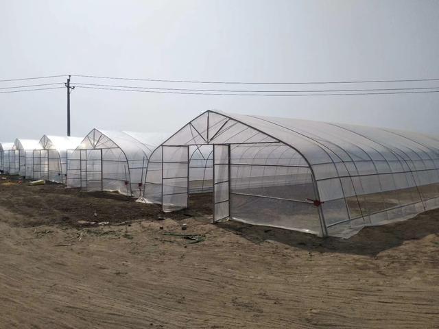 薄膜塑料温室大棚水幕保温方法你知道吗?现代农业种植妙招
