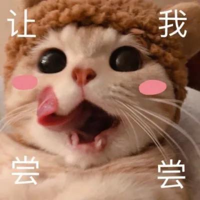 可愛小貓表情包:老子要吃火鍋