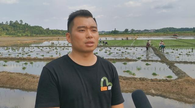 """南丰:发展""""生态种养"""" 打造绿色农业"""