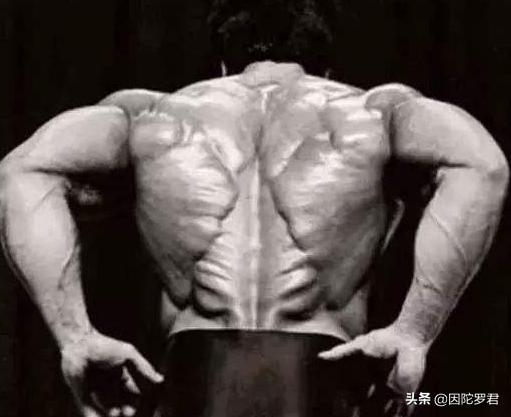 """?李小龍身體有多變態?一組罕見肌肉照曝光,背后練出""""圣誕樹"""""""