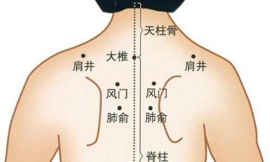 背部的经络图_学习啦在线学习网