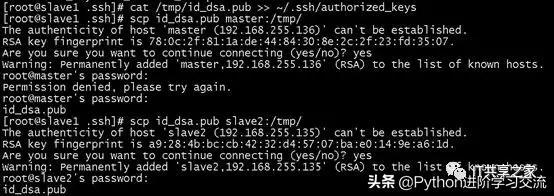 服务器之间实现免密登录的简易教程