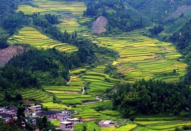 广东又一山脉走红,温度比城区低七度,清凉避暑,7月前往正合适