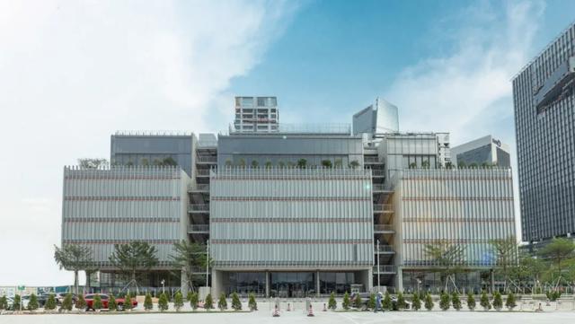 深圳国际幼儿园没学位?维多利亚、英皇、国王等最新学位信息公布