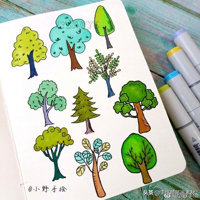 简笔画丨幼儿园的小朋友一起来画简单的植物吧,植物简笔画素材!
