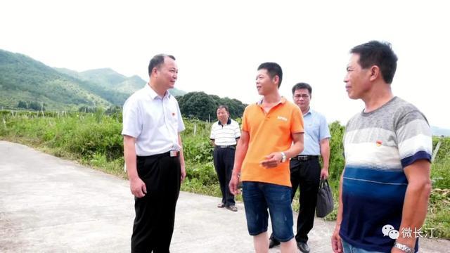 长汀县委书记廖深洪调研农村基层党建工作