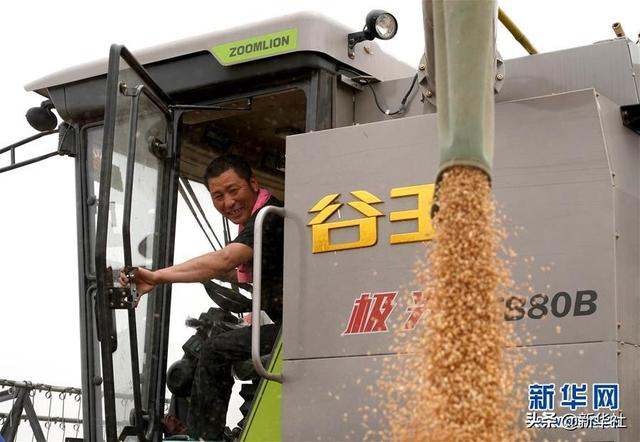 习近平总书记关切事丨食为政首――稳住农业基本盘增添发展底气