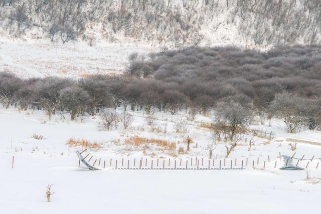 描写冬天的诗句(48句)_诗句名言_古诗词名句网