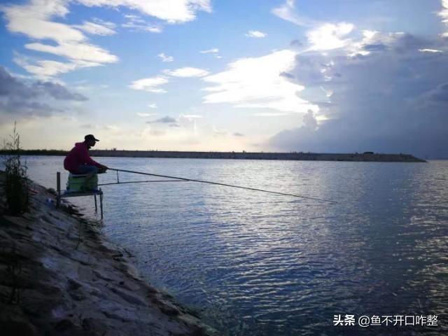夏末初秋草鱼的钓位选择及钓法