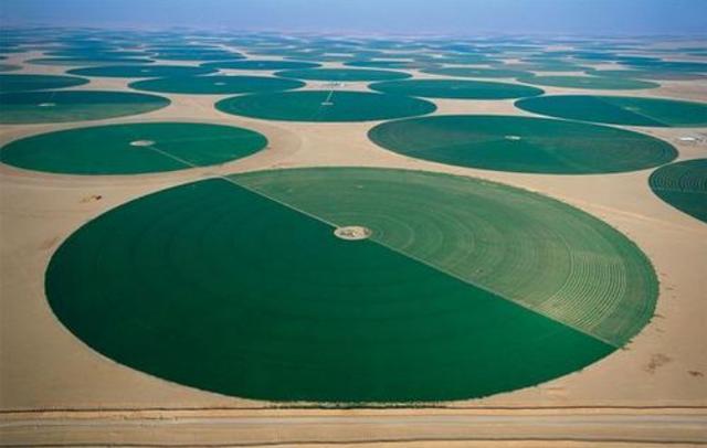 沙特阿拉伯全是沙漠,他们是怎么种田的?贫穷限制了我的想象