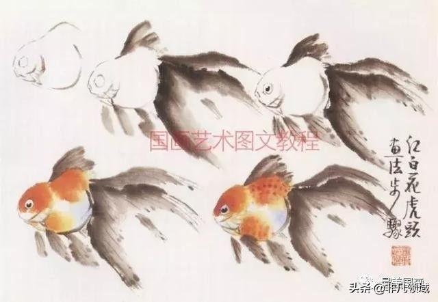 徐湛写意金鱼图片