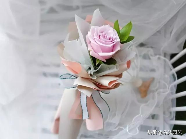 单支玫瑰花图片-海量高清单支玫瑰花图片大全 - 阿里巴巴