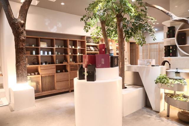 全屋可售   多元业务进入盈利期 茶语大师茶空间业绩持续增长