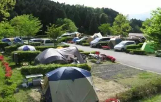 房车露营地规划设计要素及案例