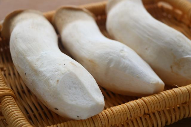 雞腿菇不炒不涼拌,學會新吃法,好吃又下飯,上桌湯汁都不剩