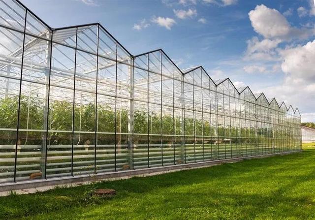 轻简型连栋塑料大棚结构设计及优化