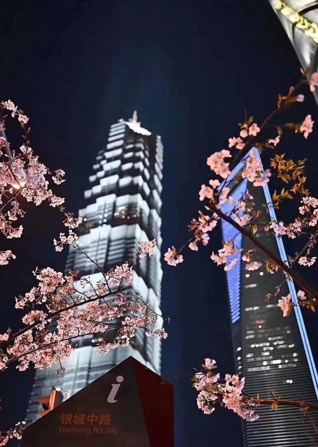 上海丨8月8日雲上銭屋&雲品鮨烧一周年庆