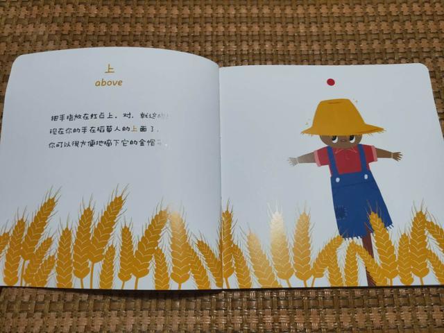 《婴幼儿超级认知力》:难以比划的空间认知力,要带着孩子这样玩