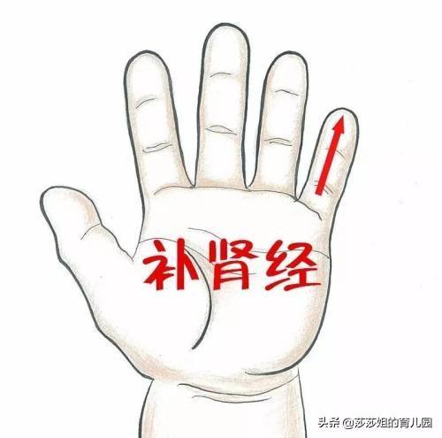 人体经络之足少阴肾经穴位分布图_诺雅_新浪博客