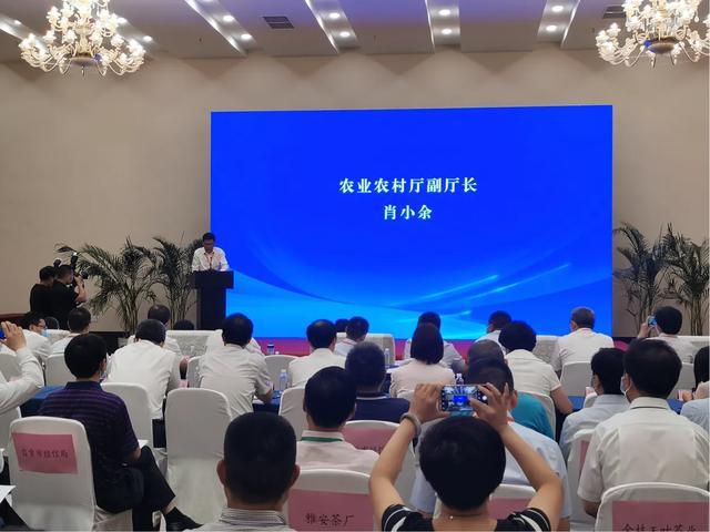 四川现代产业新格局 川茶川酒深度融合赋能高质量发展