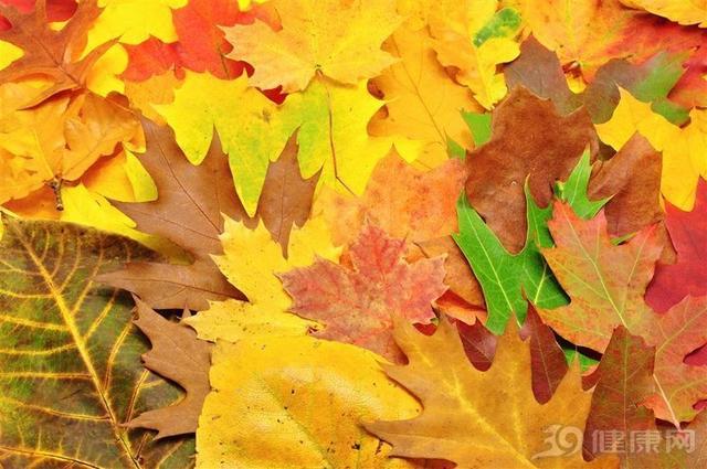 秋天过得好,来年疾病少!4大养