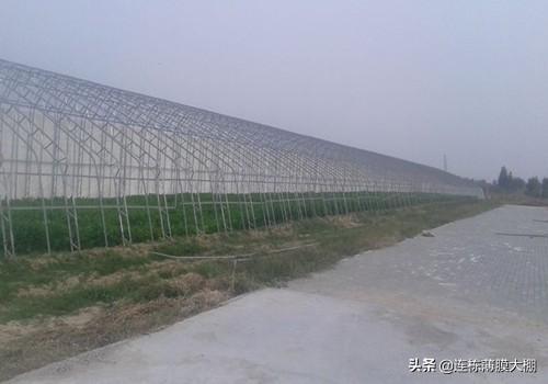 """17亿打造的寿光蔬菜小镇 超级大棚造价400万 被誉""""农业硅谷"""""""