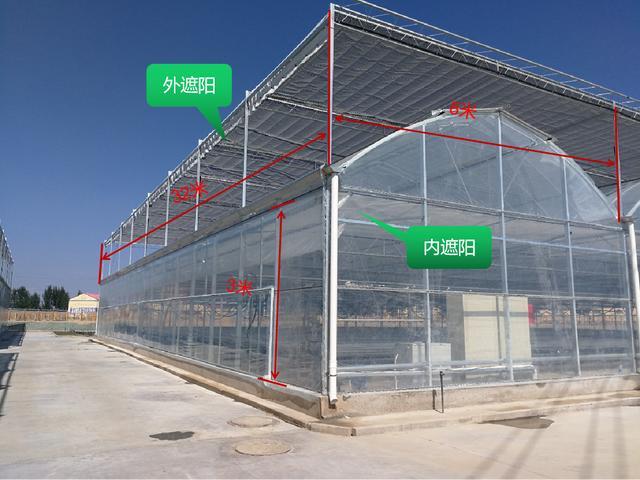 连栋薄膜温室建造掌握3个原则,建好不后悔,后期还可以改造